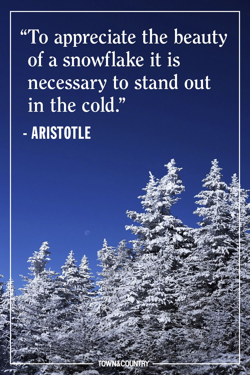 22 Best Winter Quotes  Cute Sayings About Snow  The