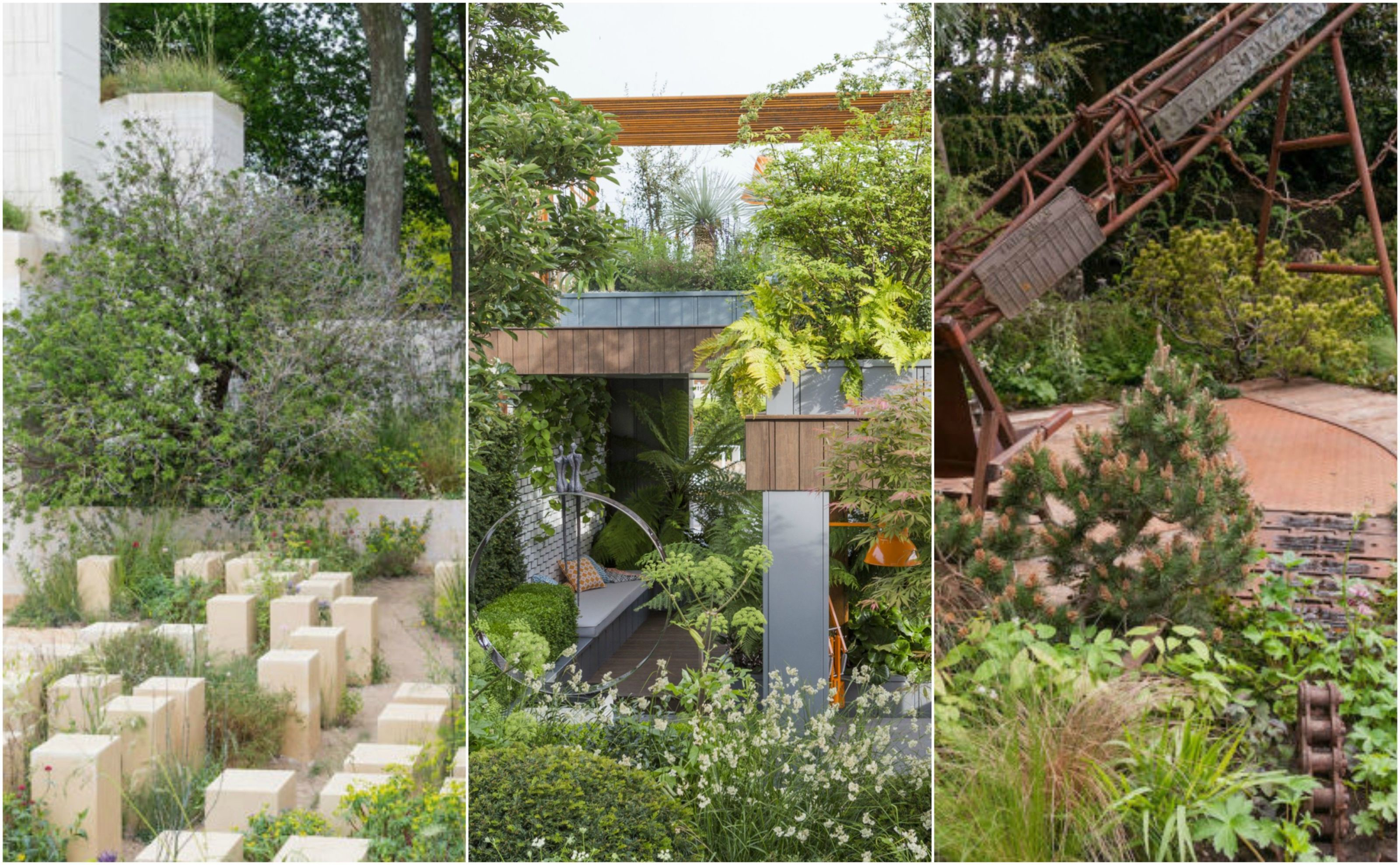 Gold Stars For Wildlife Friendly Space At RHS Chelsea