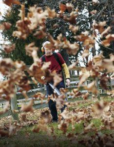 Backpack leaf blower comparison test also blowers reviews rh popularmechanics