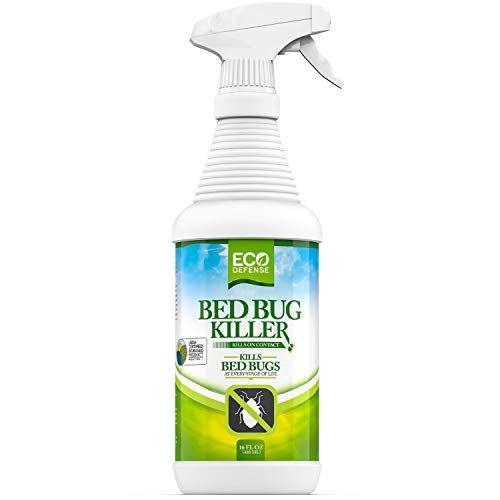 7 Best Bed Bug Sprays 2020 Bed Bug Killers