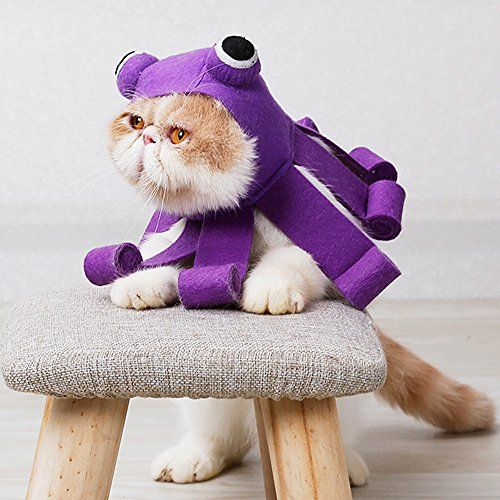 Whether it's a dog costume or cat costume you are looking to put on your furry friend we've got the best selection around. 22 Best Halloween Costumes For Cats 2021 Best Cat Costumes