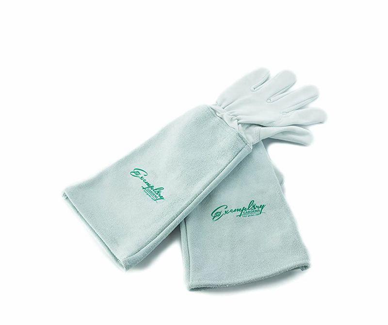 1588881977 pruning gloves 1588881951
