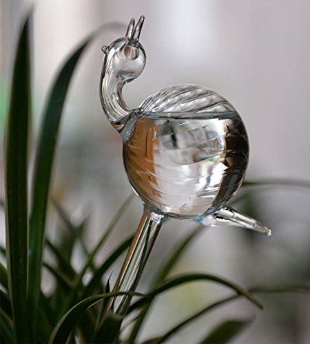 Hand Blown Clear Glass Self Watering