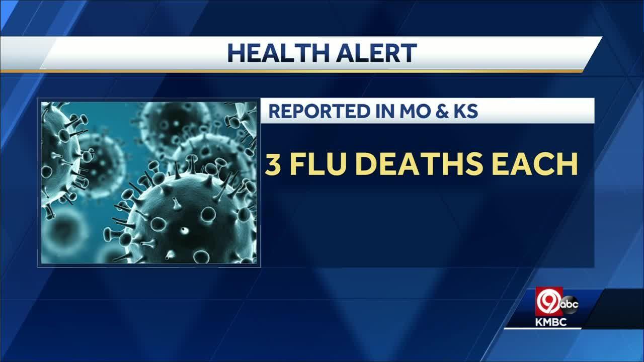 FLU SEASON IS HERE: First flu-associated deaths of season reported ...
