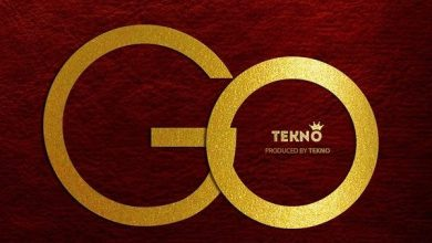 Photo of MUSIC: Tekno – GO (Prod. By Tekno)