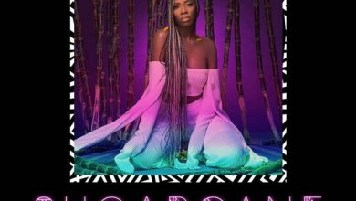 Photo of Tiwa Savage Set To Release New Album (EP) See Photos + Release Date