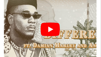 "Photo of Burna Boy – ""Different"" ft. Damian Marley x Angelique Kidjo"