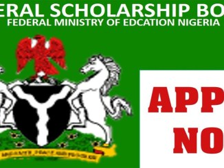 List of Current Undergraduate Scholarships in Nigeria ( APPLY FREE)