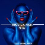 Wig By Todrick Hall