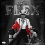 Kizz Daniel Flex