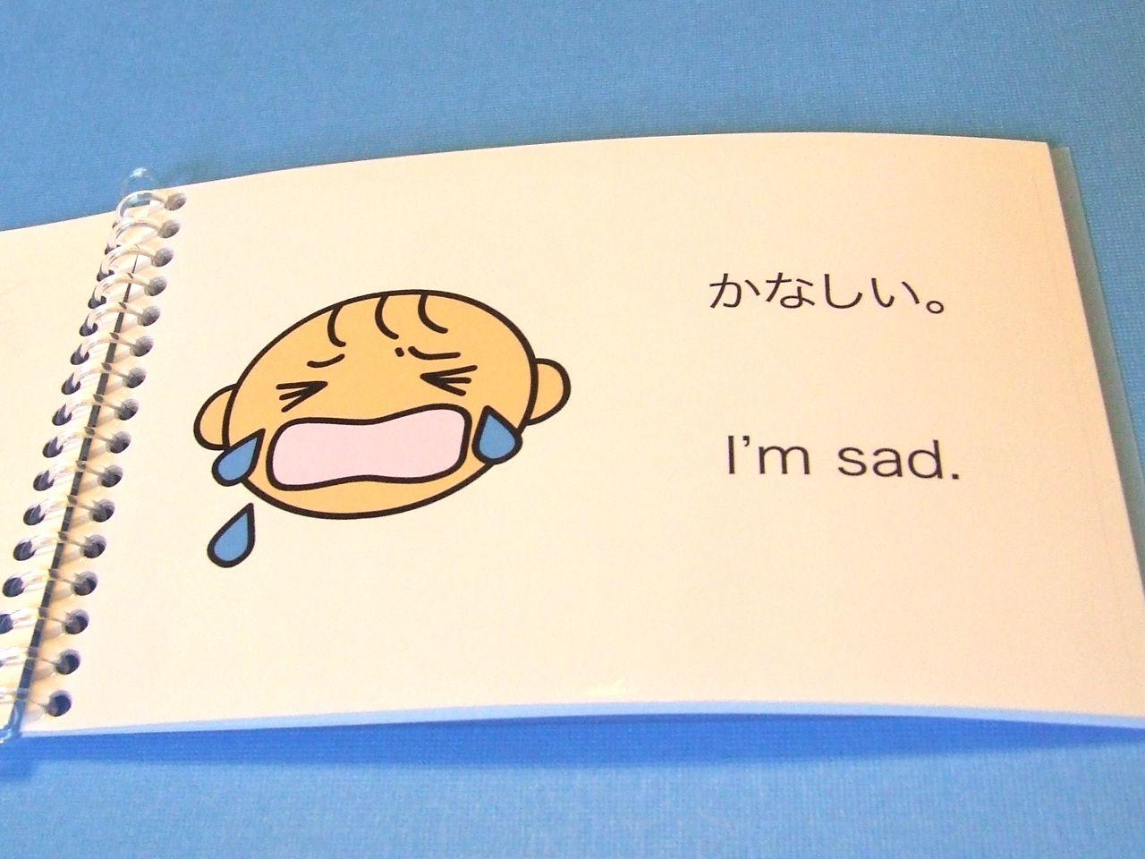 Feelings In Japanese