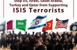 US, allies seek to foster not eliminate terrorism: Analyst