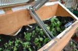 (Off The Grid Living) Cold Frames: The Easiest Way To Get A Jump On The Growing Season