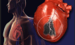 Health & Science: Injectable gel helps heart muscle regenerate after heart attack
