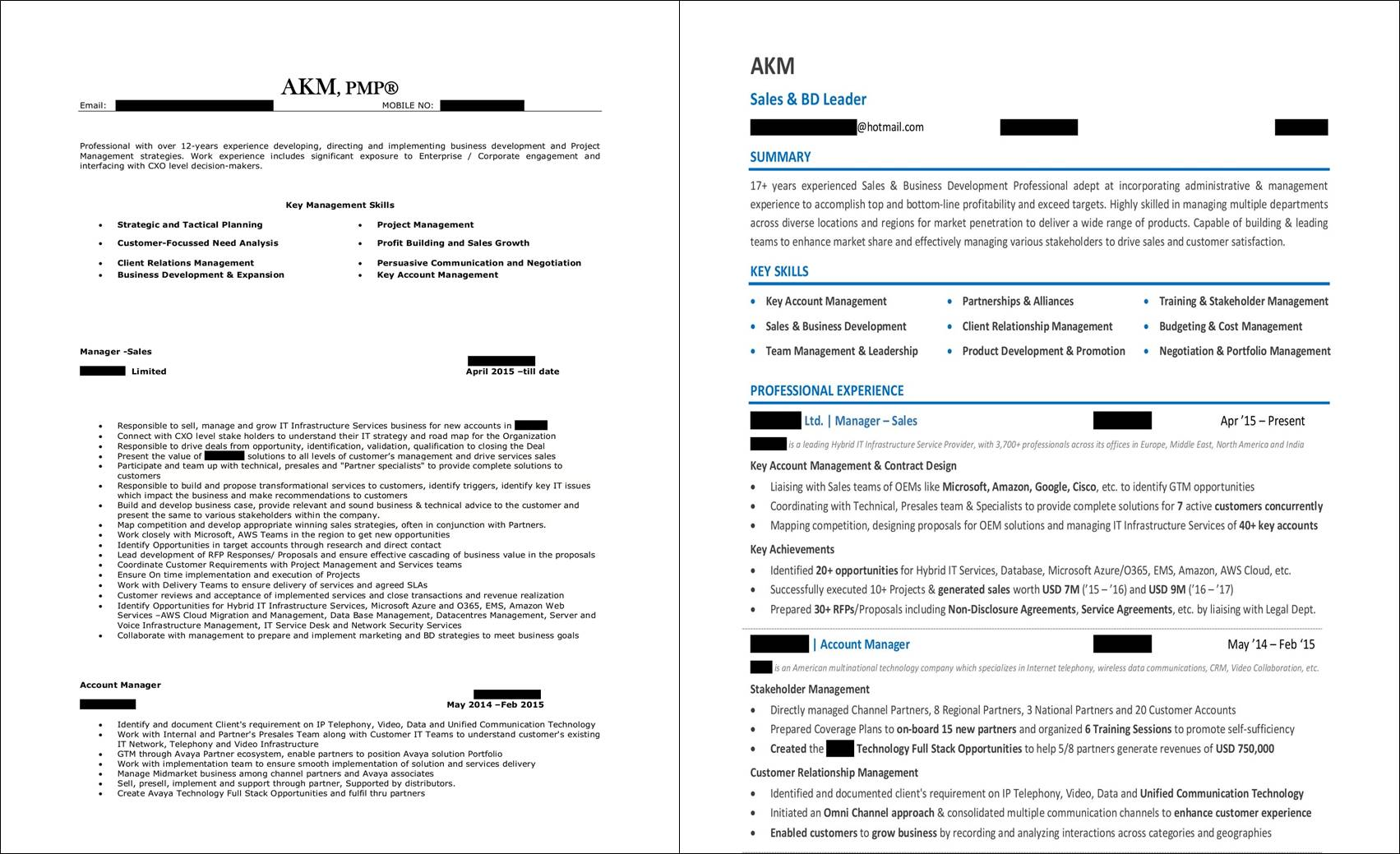 Best Resume Format For Sales Professionals Sales Resume Examples And Samples