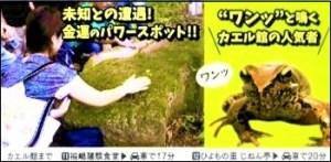 信州そば街道根羽村カエル館宣伝