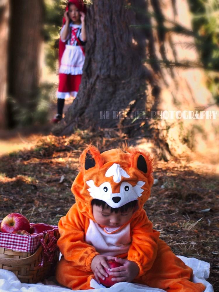 RED AND FOX_Wondershare