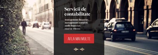 EXCLUSIV CONSULT Servicii de contabilitate, management financiar...