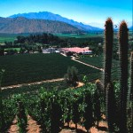 Vancouver Playhouse International Wine Festival Features Chile in 2012