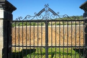 Burgundy tour - Clos des Perrieres