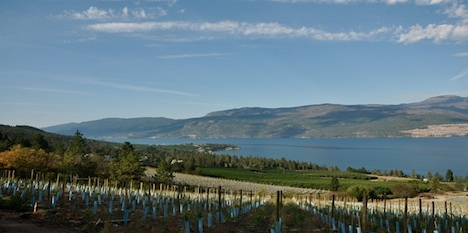 ...an ideal, gently sloping south-west facing site overlooking Lake Okanagan