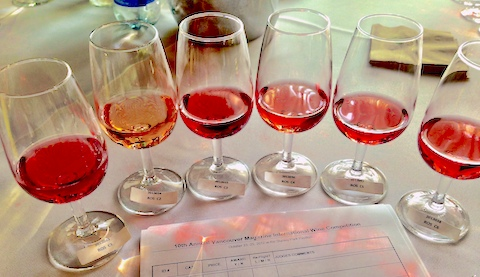 line up of rosé wine at judging for Vancouver Magazine Wine Awards