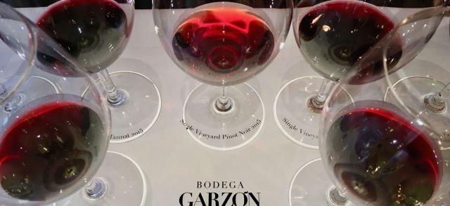 Bodega Garzon tasting glasses