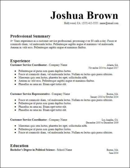 Long Professional Summary Resume Template - HirePowers.net