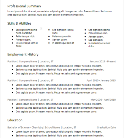 Many Skills Professional Summary Resume Template