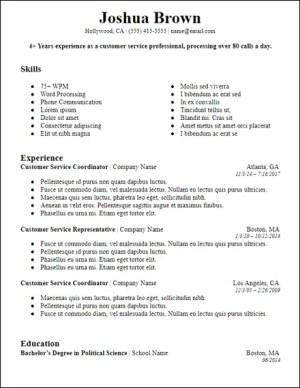 google_docs_bold_summary_resume_template