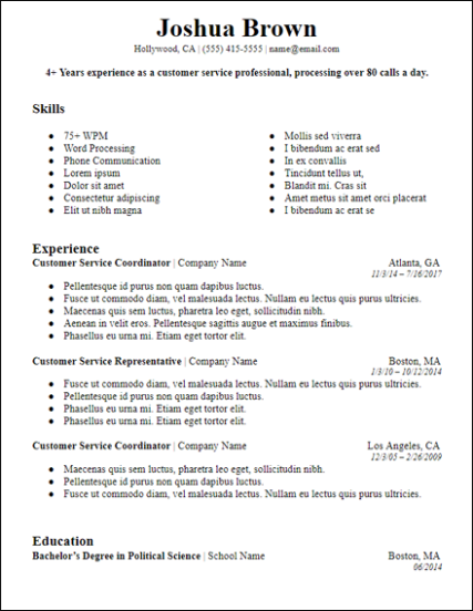 Bold Professional Summary Google Docs Resume Template ...