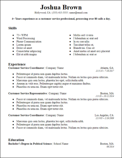 Bold Professional Summary Google Docs Resume Template