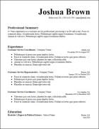 google_docs_longer_summary_resume_template