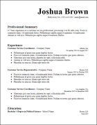 google_docs_longer_summary_resume_template