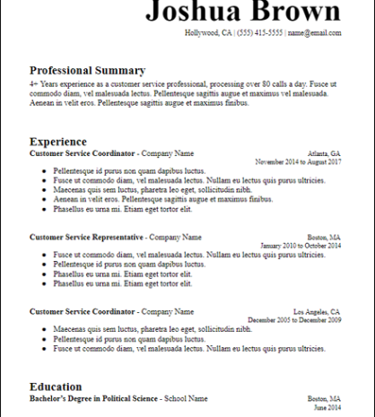 Longer Professional Summary Google Docs Resume Template Hirepowers Net