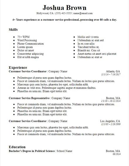 bolded professional summary resume template