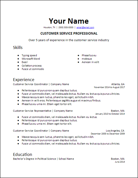 Industry Specific Professional Summary Resume Template