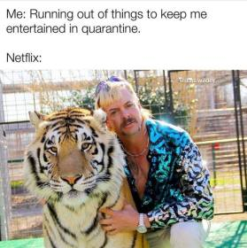 Tiger King meme about keeping team members connected and entertained during quarantine