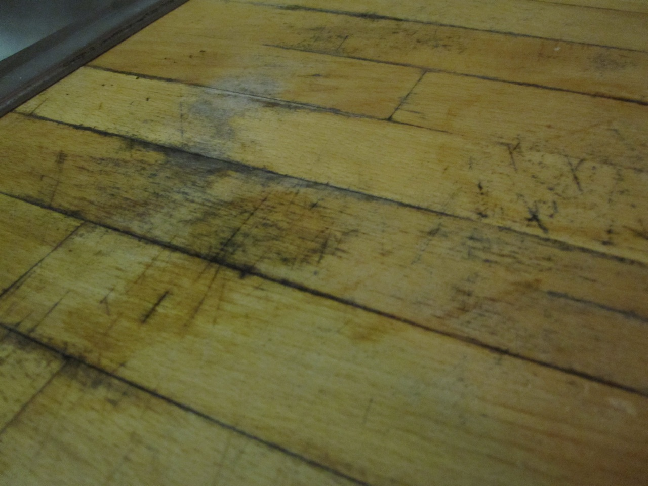 Fix moldystained wood counter top  kitchen countertop