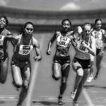 2019年最新版|早稲田大学スポーツ科学部入試の振り返り