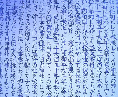 日本語への対応について