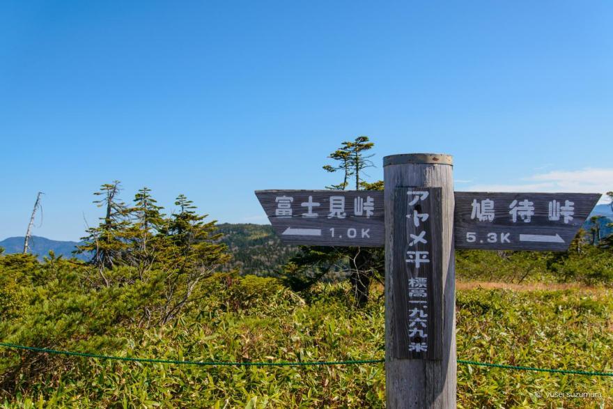 富士見峠を通り越してアヤメ平へ