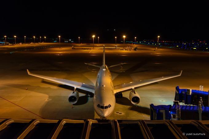 中部国際空港 エディハド航空機