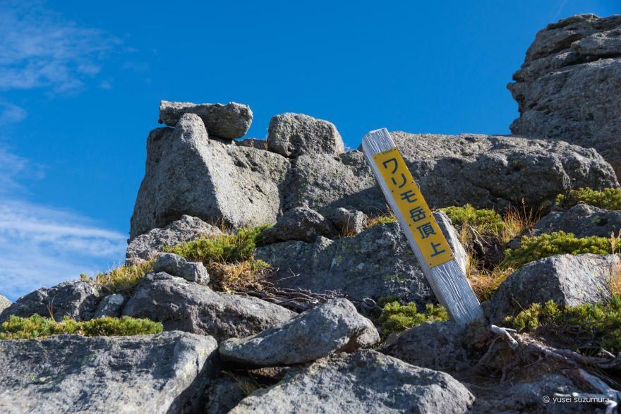 ワリモ岳 登頂