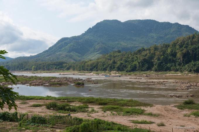 メコン川 ジャングル