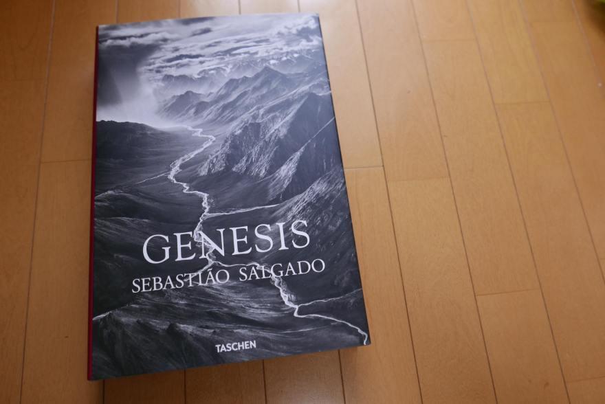Genesis サルガド 写真集