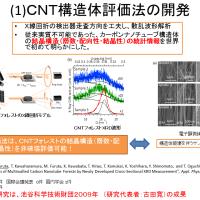 Application of Carbon Nanotubes