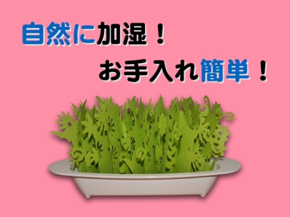 Hiroyaki misty garden2nd001