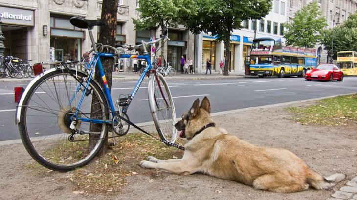 [凹] 大事な自転車を盗難から守る5つの方法を紹介するよ!