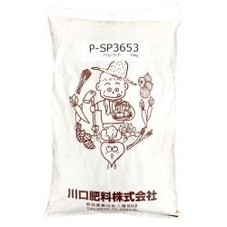P-SP3653
